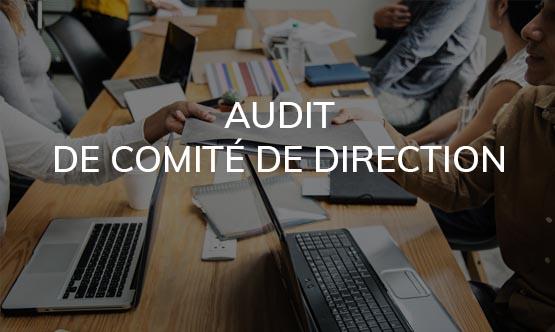 Audit de comité de direction